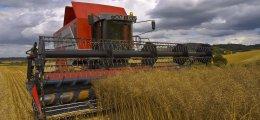 Euro am Sonntag-Titel: Agrarinvestitionen: Wie Anleger die Ernte einfahren | Nachricht | finanzen.net