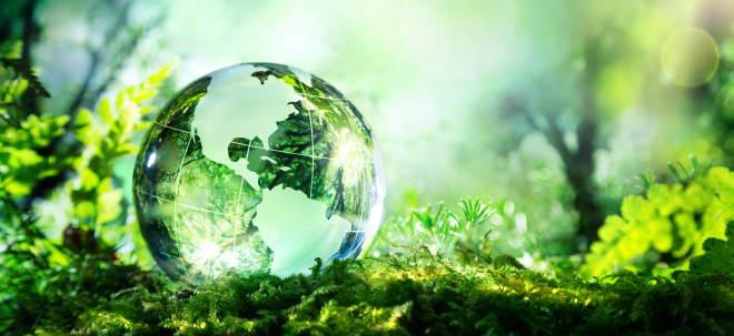 Grüne Gewinner: 1A-Fonds: Mit diesen Fonds punkten Anleger in jeder Hinsicht   Nachricht   finanzen.net