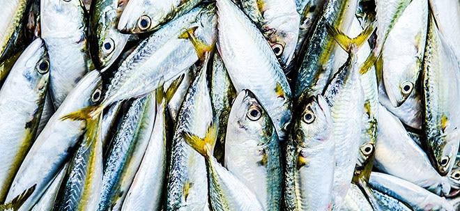 Euro am Sonntag-Zerti-Tipp: Indexzertifikat: Dicke Fische im Netz | Nachricht | finanzen.net