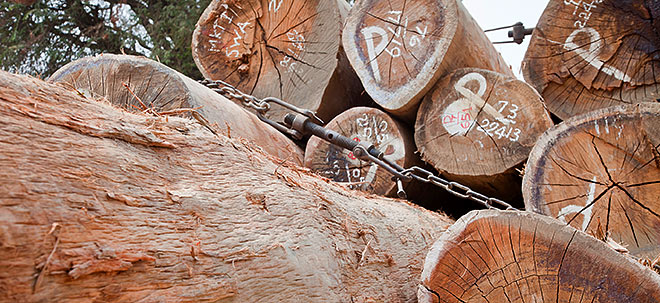 Bauboom: Nach Rekordhoch im Mai: Wieso der Holzpreis mit dem Abflauen des Pandemie-Booms wieder fällt | Nachricht | finanzen.net