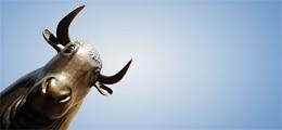 Börsen ziehen an: Gipfelbeschlüsse sorgen für Freudensprünge | Nachricht | finanzen.net