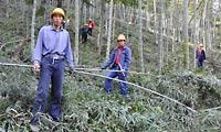 China: Asian Bamboo: Bambusboom im Bauernstaat   Nachricht   finanzen.net