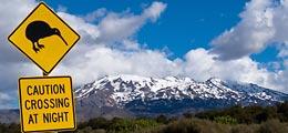 Exotische Investments: Neuseeland: Ein Paradies auch für Investoren | Nachricht | finanzen.net
