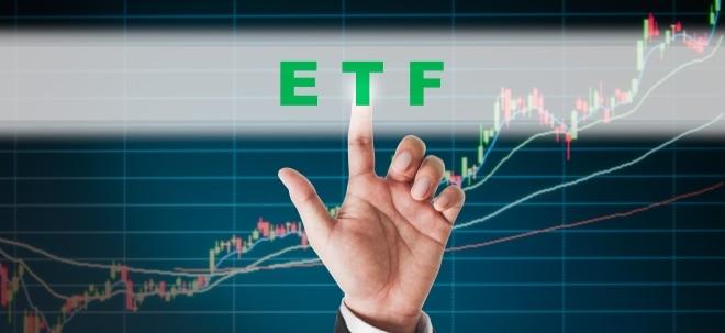 Grenzenlose Vielfalt: Themen-ETFs: Weshalb diese Indexfonds bei Anlegern so heiß begehrt sind | Nachricht | finanzen.net