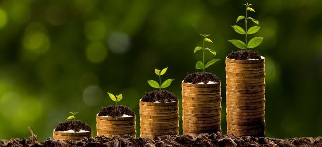 Umwelt im Fokus: Anleger und die Klimawende: Kann man am Klimawandel Geld verdienen?