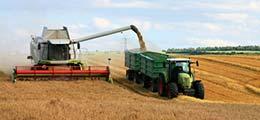 : Рост сельского хозяйства в России оказался на 30% статистической ошибкой