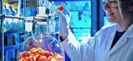 Positiver Ausblick: Symrise 2012 mit Umsatz- und Gewinnrekord | Nachricht | finanzen.net