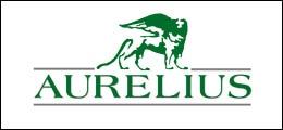 Interview: Aurelius-Chef: Auch 2013 soll die Dividende steigen | Nachricht | finanzen.net