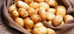 Unternehmensanleihe: Hier stimmt was nicht: (Zu) dicke Kartoffeln | Nachricht | finanzen.net