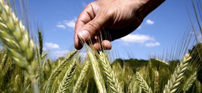 Weizen und Rohöl: Weizen: Hochspannung nach Preissturz | Nachricht | finanzen.net