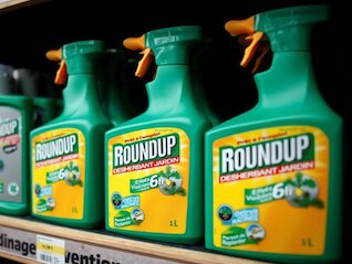 : Bayer plunges after jury finds its Roundup weedkiller caused cancer
