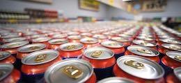 beer pivo37482