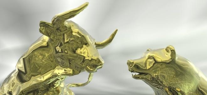 Aktienmarkt beflügelt: Oppenheimer: Investoren können auf eine weitere Rally bei diesen Rekord-Aktien setzen | Nachricht | finanzen.net