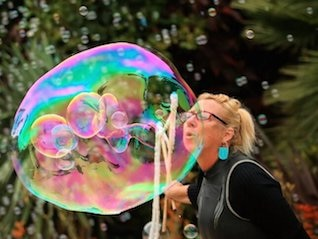 : The inverted yield curve will cause asset bubbles, not recession, economist says