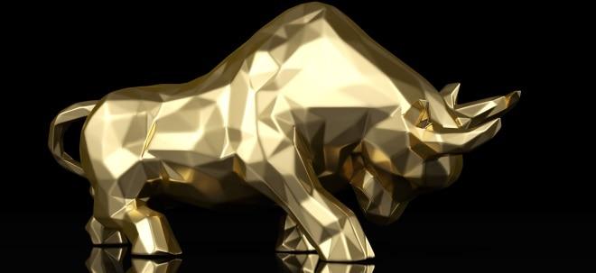 Experte erwartet auch für 2020 Fortsetzung des Bullenmarkts