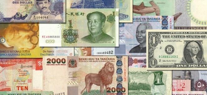Devisen 2020: Das sind die Währungen mit den größten Wertverlusten 2020 | Nachricht | finanzen.net