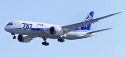 Nach Pannenserie: Boeing stoppt 'Dreamliner'-Auslieferung | Nachricht | finanzen.net