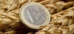 Entspannung in Krise: Euro deutlich gestiegen | Nachricht | finanzen.net