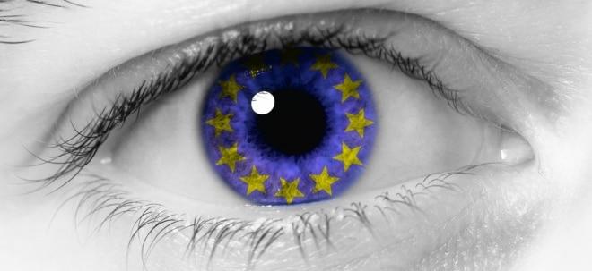 Euro am Sonntag-Zerti-Tipp: Qualitätsaktien Europa: Fuchs auf der richtigen Fährte | Nachricht | finanzen.net