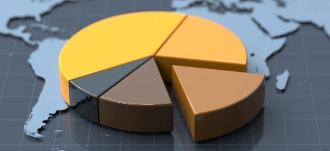 Euro am Sonntag-Fonds-Tipps: Top-Fondskategorien: Wo himmelhohe Zuwächse winken | Nachricht | finanzen.net