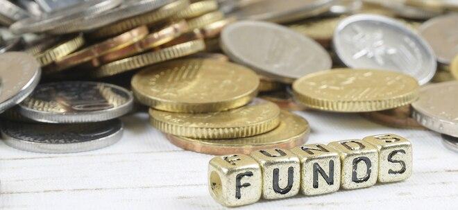 Weniger Gebühr: Fondskosten: Welche Fonds gut und günstig sind | Nachricht | finanzen.net