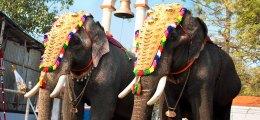 Starker Absturz: Indien braucht Investoren aus dem Ausland | Nachricht | finanzen.net