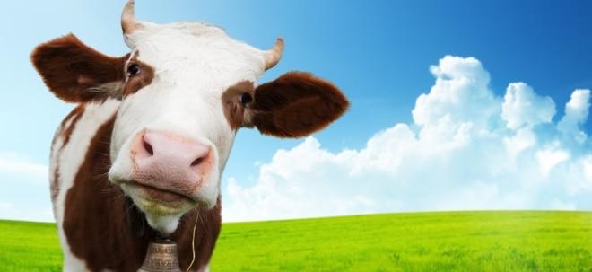 Wandel der Agrikultur: Löst Beyond Meats Fakefleisch bald Rinder ab? Warum das gut für Farmer sein soll | Nachricht | finanzen.net
