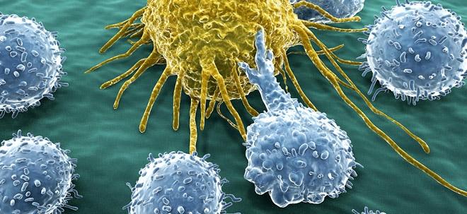 Euro am Sonntag-Fondscheck: Fonds im Fokus: Candriam Equities L Oncology Impact C | Nachricht | finanzen.net