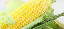 Rohöl und Mais: Mais: Kurssprung nach 17-Monatstief | Nachricht | finanzen.net