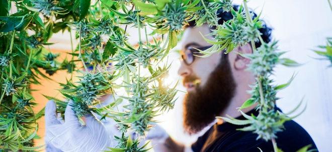 Cannabis-Riese mit Zahlen: Ausblick: Canopy Growth legt Quartalsergebnis vor | Nachricht | finanzen.net