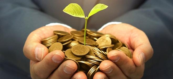 Euro am Sonntag-Exklusiv: Gutes Gewissen lohnt! Die Top-Investments für Nachhaltigkeit | Nachricht | finanzen.net