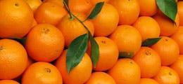 Gold und Orangensaft: Orangensaft: Seit Anfang des Monats plus 18 Prozent   Nachricht   finanzen.net