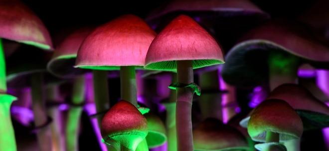 Magic Mushrooms sind zurück: Nach Kryptos und Cannabis: Sind Psychedelika der neuste Trend? | Nachricht | finanzen.net