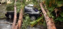 Milliarden-Schäden: Munich Re zieht nun auch Katastrophenbilanz für 2012 | Nachricht | finanzen.net