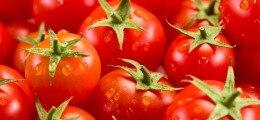 Россия запретила ввоз томатов и яблок из Азербайджана