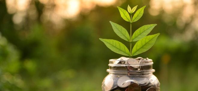 Profi-Tipps zur Geldanlage: Live-Mitschnitt: Nachhaltiges ETF-Depot aufstellen - mit Profit die Erde retten | Nachricht | finanzen.net