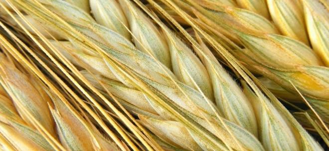 Euro am Sonntag-Rohstoffe: Weizen: Rekordernte in Sicht | Nachricht | finanzen.net